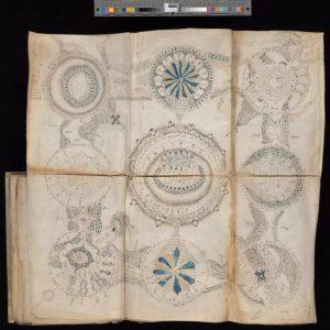 Voynich Manuskript 9 Welten im Tauchmaske Buch